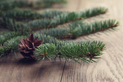 Fir branch close up on oak table Stock Photos