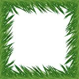 Fir Frame for Christmas. Fir branch frame for christmas designs Royalty Free Stock Photography