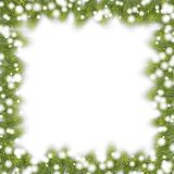 Fir Frame for Christmas. Fir branch frame for christmas designs Stock Image