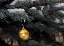 Fir branch with golden ball stock photo