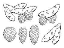 Fir branch graphic cone black white isolated sketch illustration vector Stock Photography