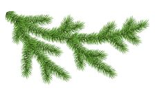 Green spruce branch. Fir branch isolated on white background. Green spruce. Realistic Christmas tree. Vector illustration Royalty Free Stock Photos