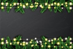 Fir Branch with Neon Lights on Chalkboard Background. Vector illustration Stock Photos