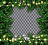 Fir Branch with Neon Lights on Transparent Background. Vector illustration Royalty Free Stock Photos