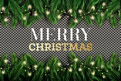 Fir Branch with Neon Lights on Transparent Background. Merry Chr. Istmas. Happy New Year. Vector illustration Royalty Free Stock Images