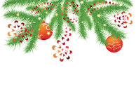 Fir branch and red Christmas balls Royalty Free Stock Images
