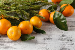 Fir branch and tangerines on the old wooden background Stock Photo