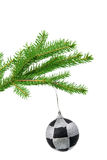 Fir branch with toy on a white background Royalty Free Stock Image
