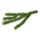 Fir branch on a white background,. Fir branch  3d illustration isolated on white background Stock Photos