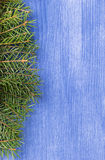 Fir branch on wood surface Royalty Free Stock Photo