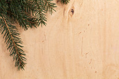 Fir branch on wood surface Stock Photography