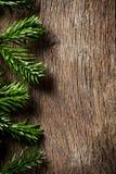 Fir branch on wooden backgound Stock Photo