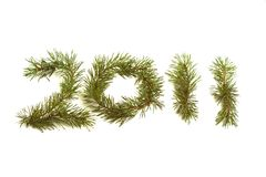 Fir branches 2011 Royalty Free Stock Images