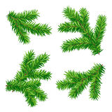 Fir branches. Set of detailed fir branches in vector format (eps8 Stock Photo