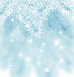 Fir branches background. Fir branch with hoar frost, snow winter background Royalty Free Stock Photo