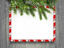 Fir branches background. Green fir tree branches on wood background. Natural design elements. Winter snow background with place for text Stock Image