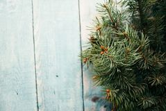 Fir branches on a blue wooden background. Minimal Christmas concept. Fir branches on a blue wooden background. Minimal Christmas concept Royalty Free Stock Photos