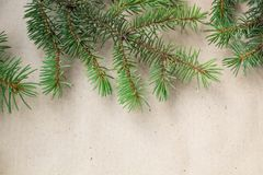 Fir branches border on light rustic background, good for christmas backdrop.  Stock Photo