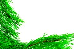 Fir branches border on white background, good for christmas backdrop.  stock photos