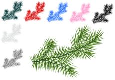 Fir branches, cdr vector Royalty Free Stock Images