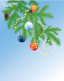 Fir branches and Christmas balls. Spruce branches with cones and Christmas balls Stock Images