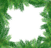 Fir branches. Christmas frame Stock Photo