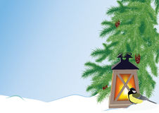 Fir branches, flashlight and tit. Spruce branches with cones, flashlight and tit Stock Images