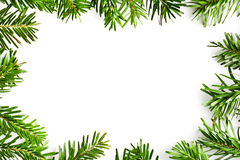 Fir branches frame Royalty Free Stock Images