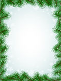 Fir branches frame pattern Stock Image