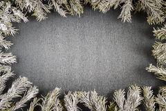 Fir branches frame Stock Image