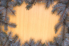 Fir branches frame Royalty Free Stock Image