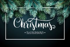 Fir Branches with Handwriting Lettering Stock Image