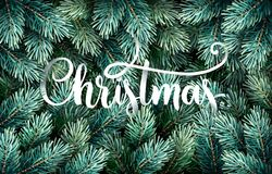 Fir Branches with Handwriting Lettering Royalty Free Stock Photography