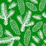 Fir branches pattern seamless. Vector illustrations of fir cones and fir branches pattern seamless on green background Stock Images