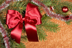 Fir branches with red bow on golden Stock Photo