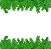 Fir branches on a white background. Frame of green fir branches on a white background Stock Photo
