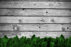 Fir branches on wooden planks Royalty Free Stock Image