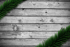 Fir branches on wooden planks. With copy space Stock Photos
