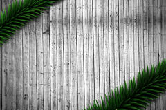 Fir branches on wooden planks. With copy space Stock Photo