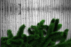 Fir branches on wooden planks. With copy space Stock Image