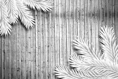 Fir branches on wooden planks. With copy space Royalty Free Stock Images