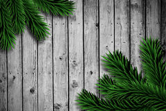Fir branches on wooden planks. With copy space Royalty Free Stock Photo
