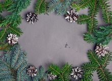 Fir brunches and pine cones arranges in a frame. Stock Photo