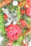 Fir Brunia And Cinnamon Sticks Christmas Decoration With Red Roses Royalty Free Stock Image