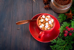 Fir   bumps cones, cocoa in red cup  on the dark wooden backgrou Royalty Free Stock Image