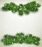 Fir bundle christmas frame. Royalty Free Stock Photo