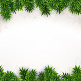 Fir christmas background. Stock Photos