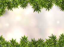 Fir christmas background. Christmas background with fir and stars. Vector illustration Royalty Free Stock Photo