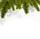Fir christmas background. Christmas background with fir and stars. Vector illustration Stock Photo