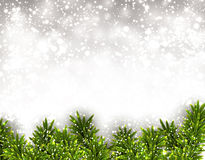Fir christmas background. Christmas background with fir and stars. Vector illustration Royalty Free Stock Image